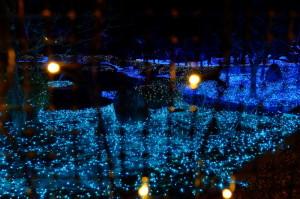 奈良夜16-21